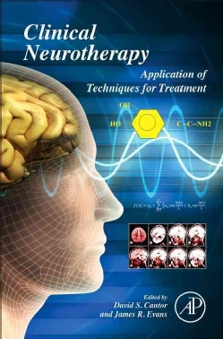 Clinical Neurotherapy: Application of Techniques for Treatment (Hardcover)