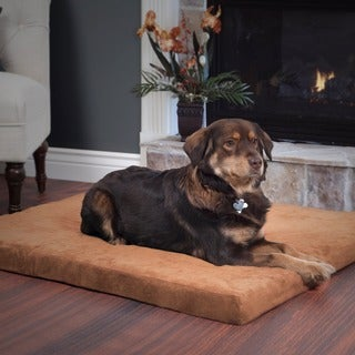 Paw Clay Orthopedic Super Foam Pet Bed