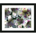 Studio Works Modern 'Spring Flowers - Yellow' Framed Print