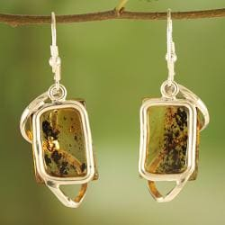 Sterling Silver Swirl Caged Honey Baltic Amber Earrings (Lithuania)