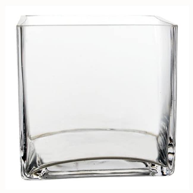 6-Inch Cube Glass Vases (Set of 6)