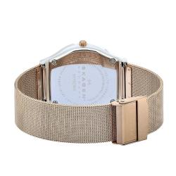 Skagen Women's Ceramic MOP Dial Rose Gold Steel Mesh Strap Watch