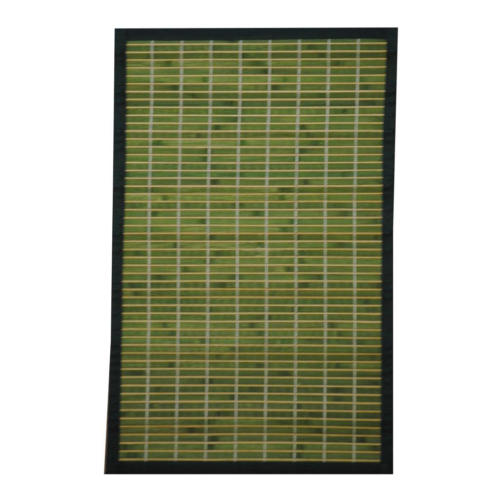 Asian Hand-woven Green/ White Bamboo Rug (1'8 x 2'8)
