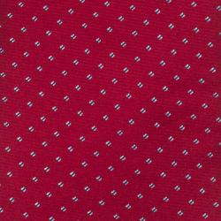 Republic Men's Silk Dotted Tie