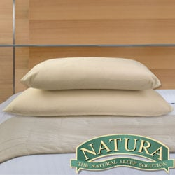 Natura Memory Foam Ventilated Core Pillow