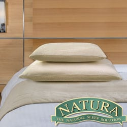Natura Embrace Memory Foam and Latex Dual Pillow