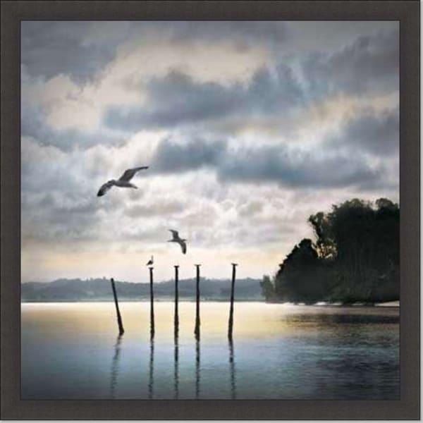 William Vanscoy 'Circling Skies' Framed Art Print