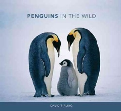 Penguins In The Wild (Hardcover)