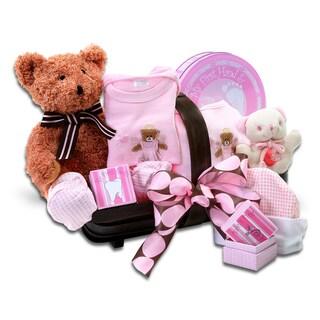 Alder Creek Gift Baskets Welcome Home Girl Baby Bundle