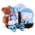 Alder Creek Gift Baskets Welcome Home Boy Baby Bundle