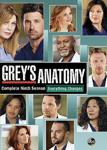 Grey's Anatomy: Season 9 (DVD)