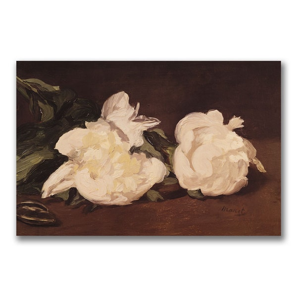 Eduard Manet 'Branch of White Peonies' Canvas Art