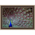 Gail Peck 'Wild Beauty I' Framed Print