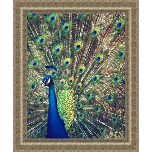 Gail Peck 'Royally Blue I' Framed Print