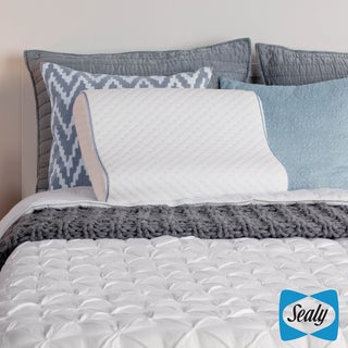 Sealy Memory Foam Contour Pillow