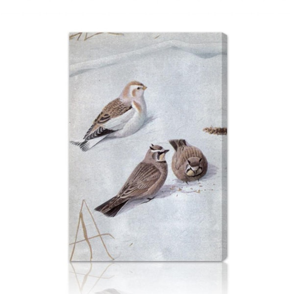 Oliver Gal 'Birds in the Snow' Canvas Art