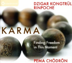 PEMA CHODRON/DZIGAR KONGT - KARMA-FINDING FREEDOM IN T