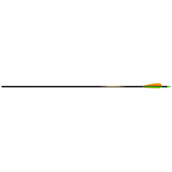 Beman ICS Bowhunter Arrow