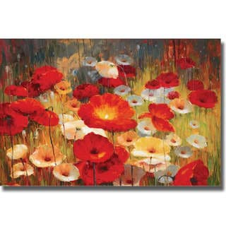 Lucas Santini 'Meadow Poppies I' Canvas Art