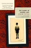 My Name Is Asher Lev (Paperback)
