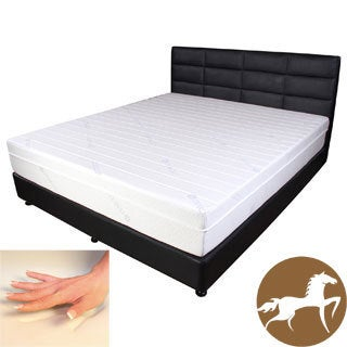 Spinal Response Cool Tencel 11-inch Queen-size Gel Memory Foam Mattress