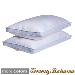 King Size Pillows | Overstock.com: Buy Pillows & Protectors Online