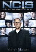 NCIS: The Tenth Season (DVD)
