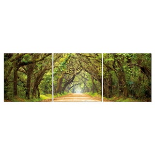 Baxton Studio Tunnel of Trees Mounted Photography Print Triptych