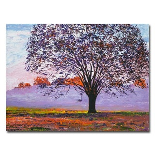 David Lloyd Glover 'Majestic Tree in Morning Mist' Canvas Art