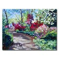 David Lloyd Glover 'Azalea Pathway' Canvas Art