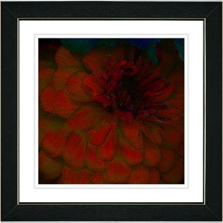 Studio Works Modern 'Red Dahlia' Framed Art Print
