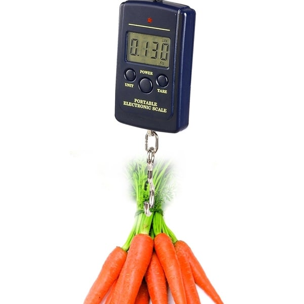 INSTEN 10G-40Kg LCD Digital Hanging Luggage Fishing Weight Scale