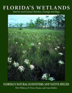 Florida's Wetlands (Paperback)