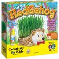 Grow A Hedgehog Kit-