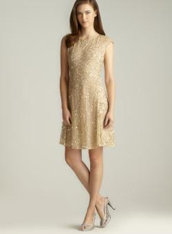 Pisarro Nights Zipper Back Sequined & Beaded A-Line Dress