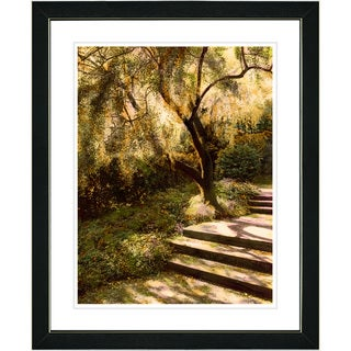Studio Works Modern 'Tree with Steps' Framed Art Print