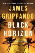 Black Horizon (Hardcover)