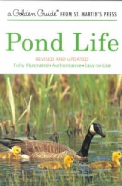 Pond Life: A Guide to Common Plants and Animals of North American Ponds and Lakes (Paperback)
