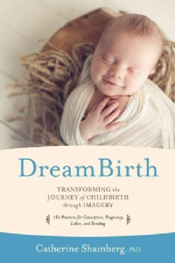 Dreambirth: Transforming the Journey of Childbirth Through Imagery (Paperback)
