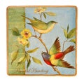 Certified International Botanical Birds Square Platter