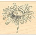 Penny Black Rubber Stamp 3.25X3.5in-Graceful