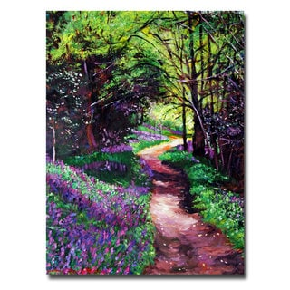 David Lloyd Glover 'Lavendar Lane' Canvas Art
