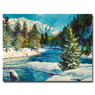 David Lloyd Glover 'Colorado Pines' Canvas Art