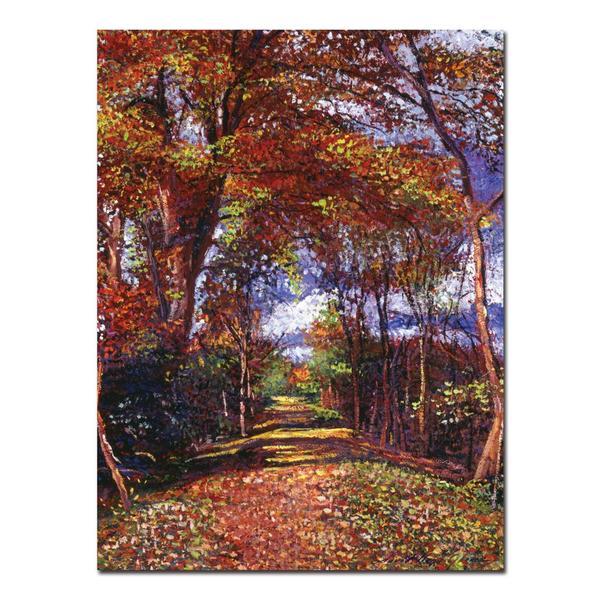David Lloyd Glover 'Autumn Colored Road' Canvas Art
