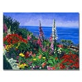 David Lloyd Glover 'Laguna Niguel Summer' Canvas Art