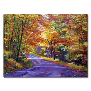 David Lloyd Glover 'New England Road' Canvas Art