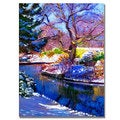 David Lloyd Glover 'Snowy Park' Canvas Art