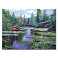 David Lloyd Glover 'Summer Waterlillies' Canvas Art