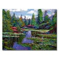 David Lloyd Glover 'Waterlily Lake Reflections' Canvas Art