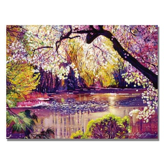 David Lloyd Glover 'Central Park Spring Pond' Canvas Art